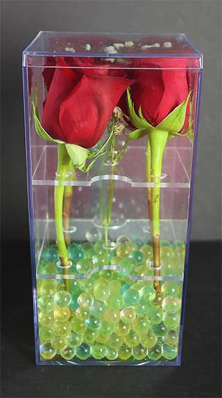 plastic box with roses
