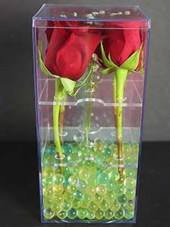 plastic boxes with inserts for long stem roses